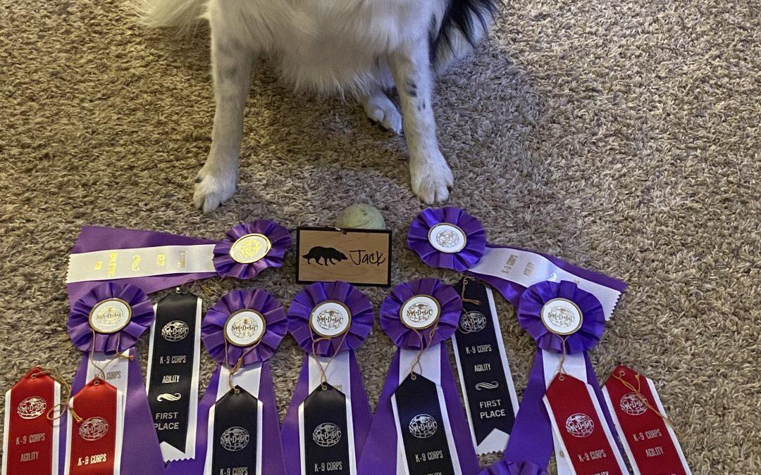 Dog Moms' Weekend – Trial Wrapup